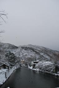 大寒波大雪((((;゚Д゚))))
